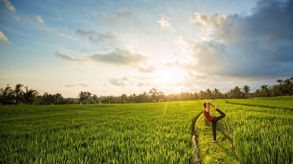 Yoga-In-The-Ricefields
